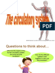 Systems - The Circulatory System