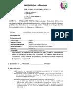 INFORME TECNICO Nº 11 Caserios San Luis El Porvernir y El Pabellon