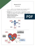ECG, Resumen