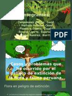 Biodiversidad y Estrategias de Conservación