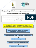 Manipulación genética de microorganismos para la obtención de nuevos fármacos de tipo indolocarbazol