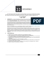 LITERATURA 22 COSTUMBRISMO.pdf