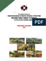 Date Palm Tissue Culture Research