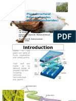 Plant Structural Polysaccharides- 060915.pptx