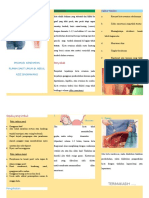 225205326-Leaflet-Kista-Ovarium-docx.docx