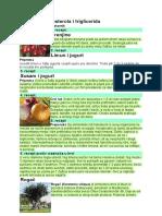 Lek protiv holesterola i triglicerida.doc
