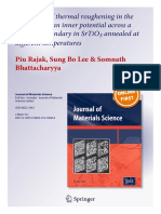 1st Author Publication Piu