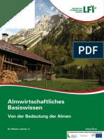 Alm Basics.pdf