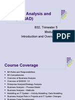 Business Analysis and Design 1