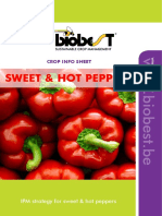Crop Sheet Pepper & Sweet Pepper