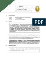 Syllabus - Analisis de Riesgo - SEUPROS - I
