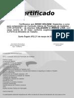 Certificado CIPA 2015-Diogo Goldani.ppt