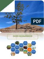 ocio ecologico