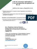 Presentación tesis multidisciplinarias