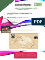 Manejo de ganado porcino y aves.pptx