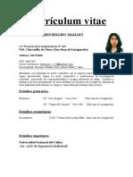Currículum Vitae Ejemplo