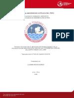Tesis 0012 Economico.pdf