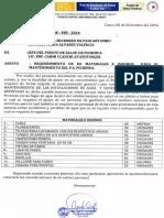 pichi.pdf