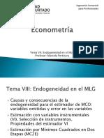Capitulo VI Endogeneidad en El MLG
