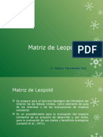 matriz de leopold teoria.pptx