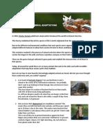 amazing-animal-adaptations-pdf