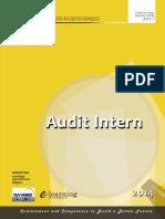 Modul audit intern