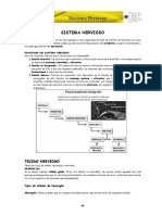 ANATOMIA CPU UNPRG SISTEMA NERVIOSO CAP-IV.pdf