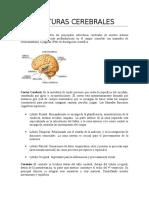 REPASOS Psicologia