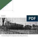 Brownsville Op Data FINAL for NUR 318 Copy (1)
