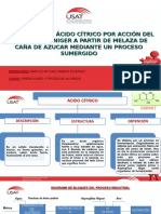 Producción de Ácido Cítrico Por Acción Del Aspergillus Niger a Partir de Melaza de Caña de Azucar Mediante Un Proceso Sumergido
