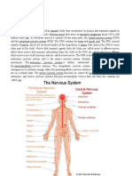 Disorders of the Nervous System 2