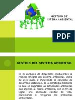 Diapositivas Gestion de Sistema Ambiental
