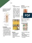 Leaflet_Penyuluhan_Karies.doc