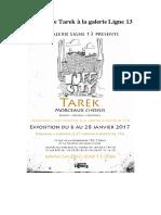 Exposition de Tarek à la galerie Ligne13