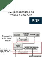 Funções Motoras Tronco e Cerebelo