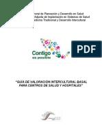 Guía de valoración basal intercultural