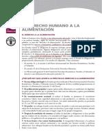 Derecho a La Alimentacion FAO