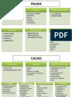 Institucionalidad_cadenas MIN AGRIC
