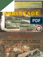 Shrinkage Exposicion