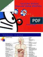 Anatomi_Digestif_2015.ppt