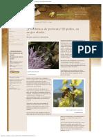 ¿Problemas de Próstata_ El Polen, Su Mejor Aliado