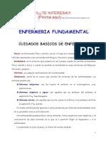 Apuntes Enfermeria Fundamental Isabel Alejo
