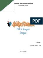 documents.tips_plan-de-afaceri-spalatorie-spitspot-cleaners.doc