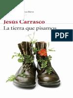 Fragmento Carrasco