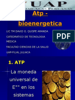 CLASE 1. ATP