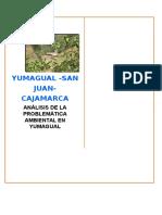 yumagual-informe