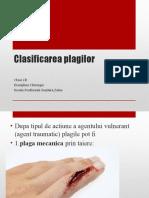 Clasificarea plagilor 2B