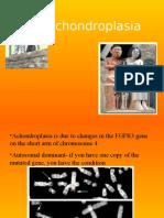 Achondroplasia[0].ppt