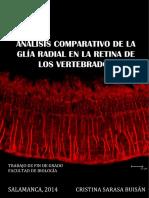 TFG_Cristina_Sarasa.pdf