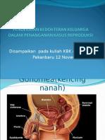 Pendekatan Kedokteran Keluarga dalam Kasus Reproduksi.ppt